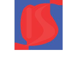 kingsa logo